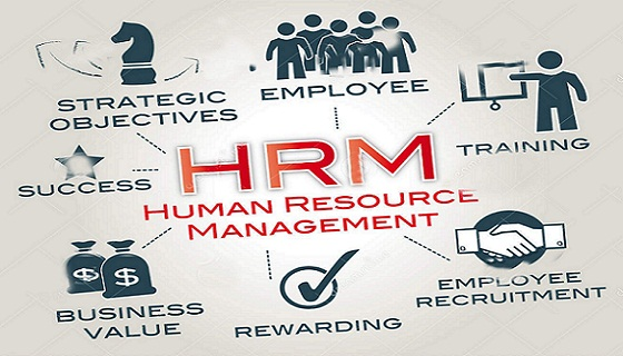 functions of human resources Resource breakdown structure:- this is how the human resource differentiate according to their function this gives a detail about how the human resource work on each segment and on each levels like corporate, operational and functional levels.